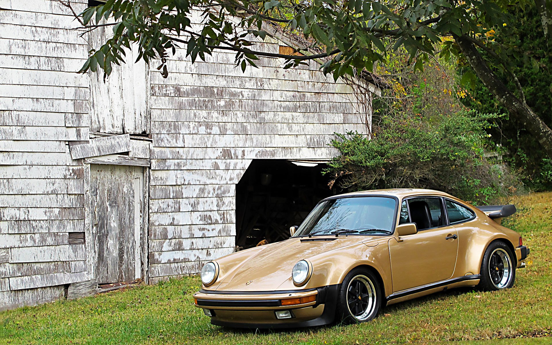 Porsche_930_-_golden_autumn.jpg